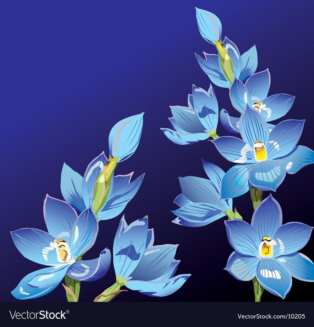 Floral background vector image