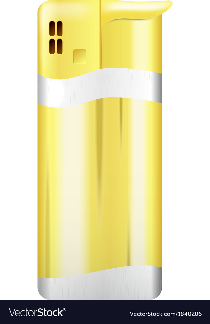 Picture gold lighter vector image