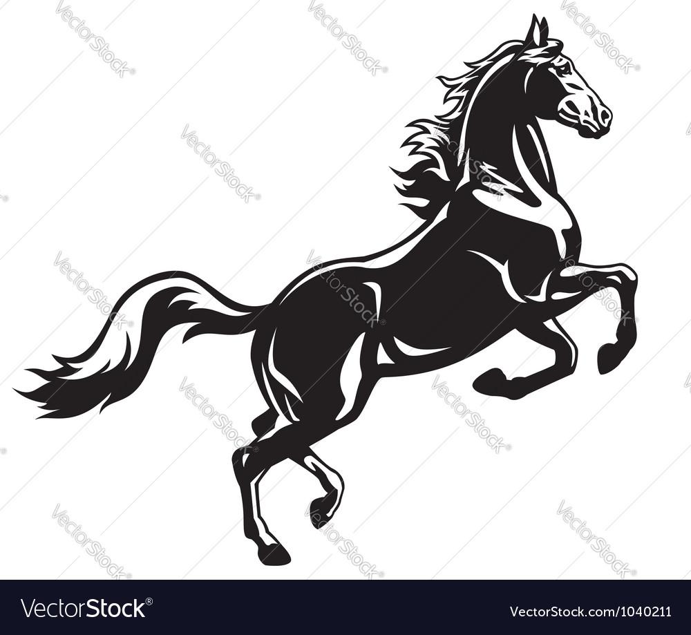 Rearing horse black white vector image