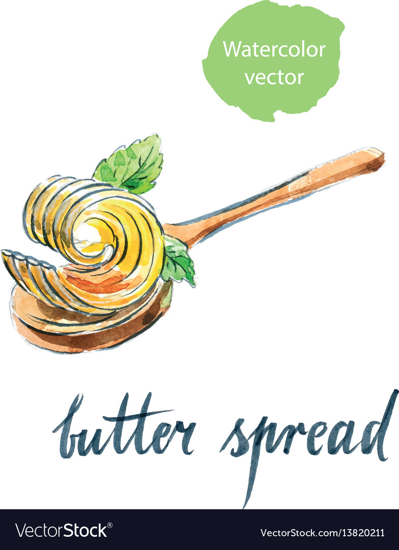 Butter spread on spoon with mint leaves vector image