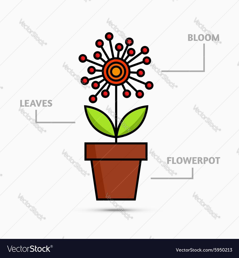 Flower in flowerpot vector image
