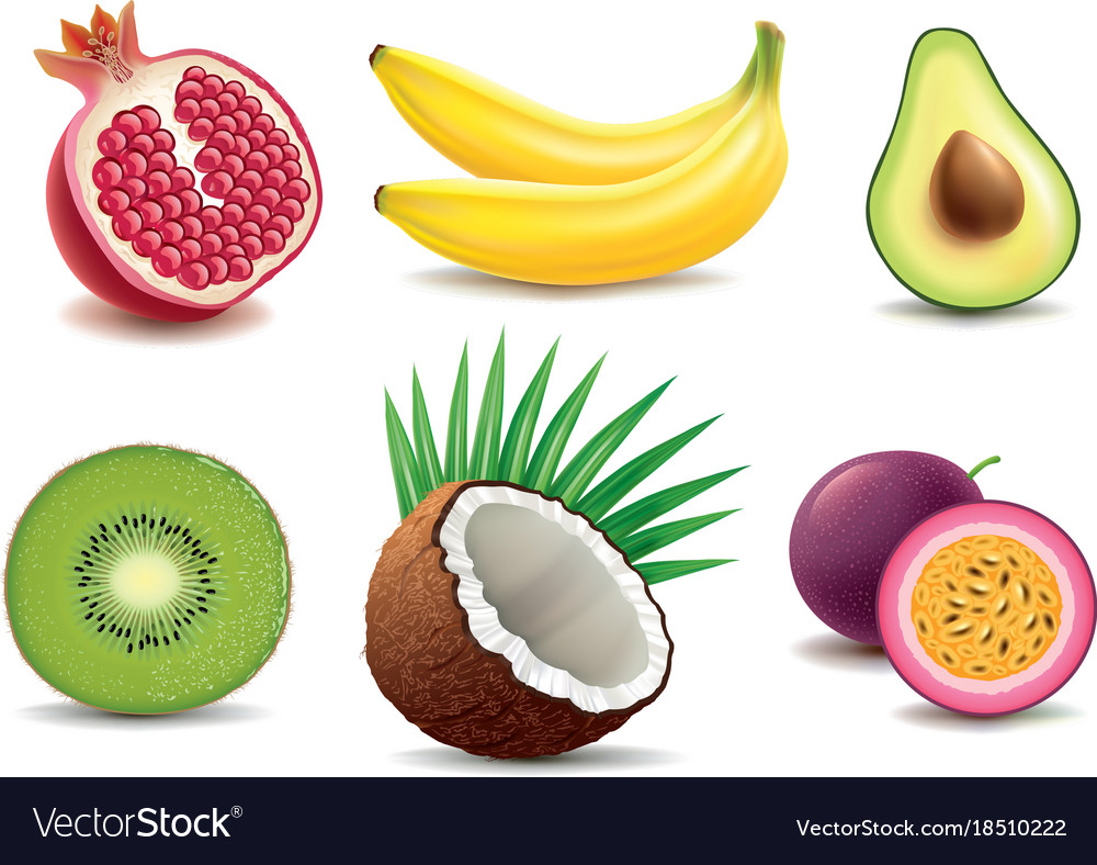 Exotic fruits- pomegranate kiwi coconut banana vector image