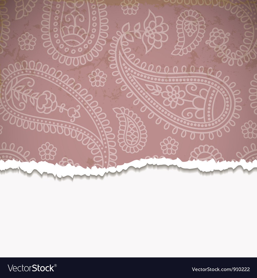 Pink paisley frame vector image