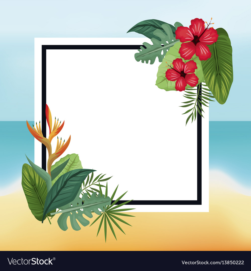 Poster hibiscus and bird of paradise beach leaves vector image