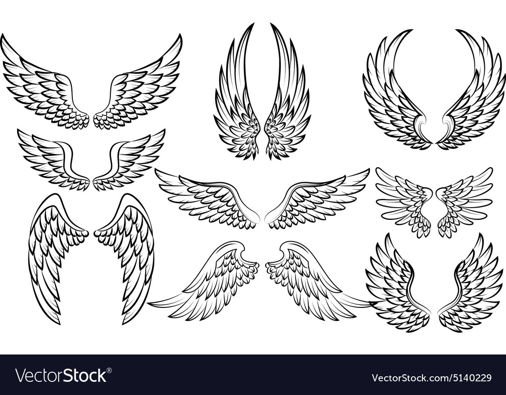 Set of fantasy stylized wings isolated on white vector image