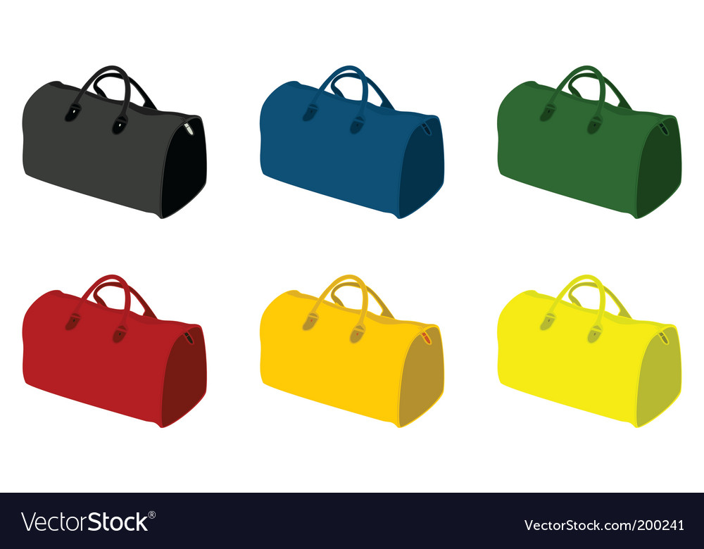 Sports bag vector image