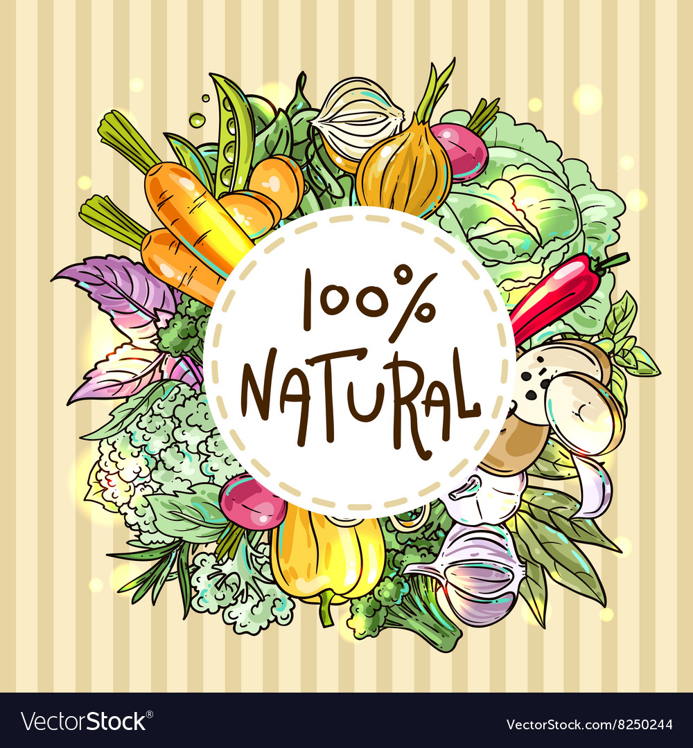 Food top view vector image