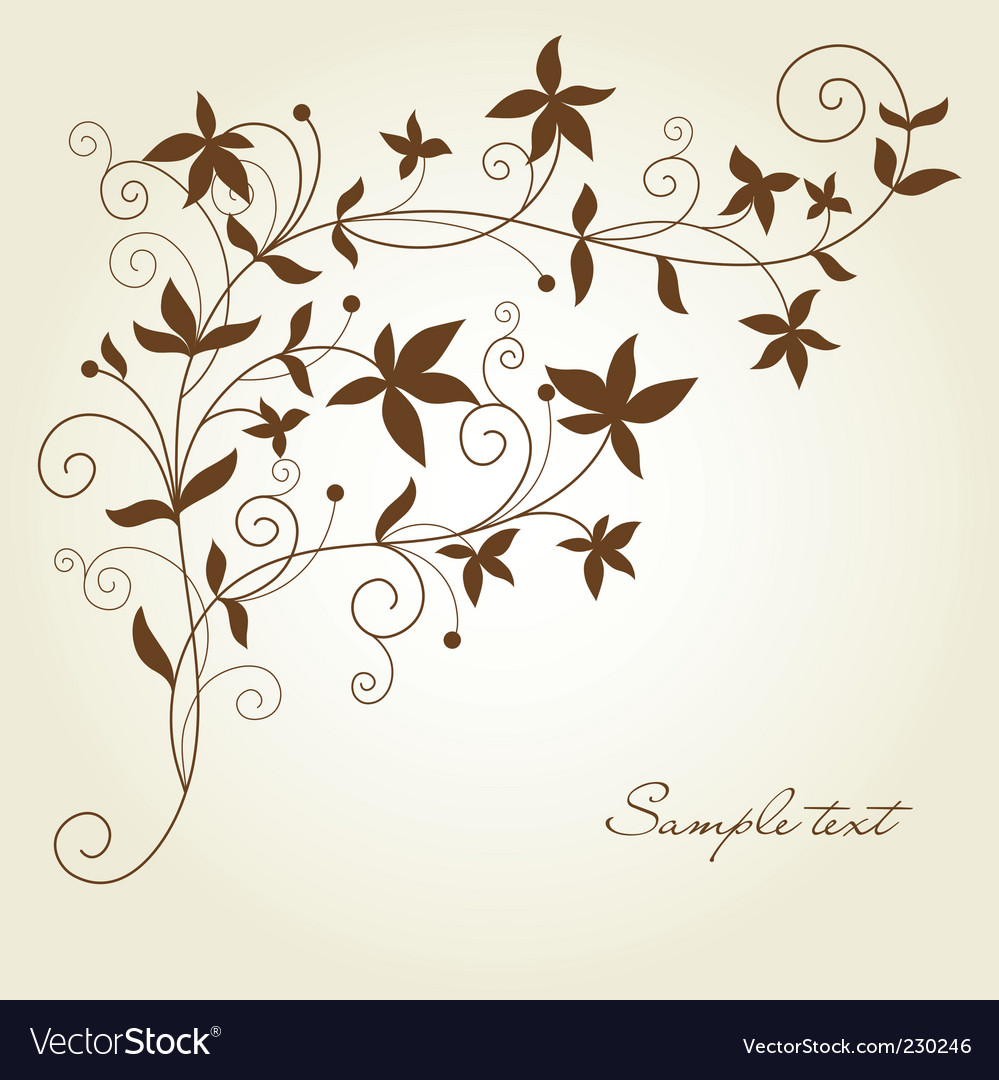 Swirl flourish vector image