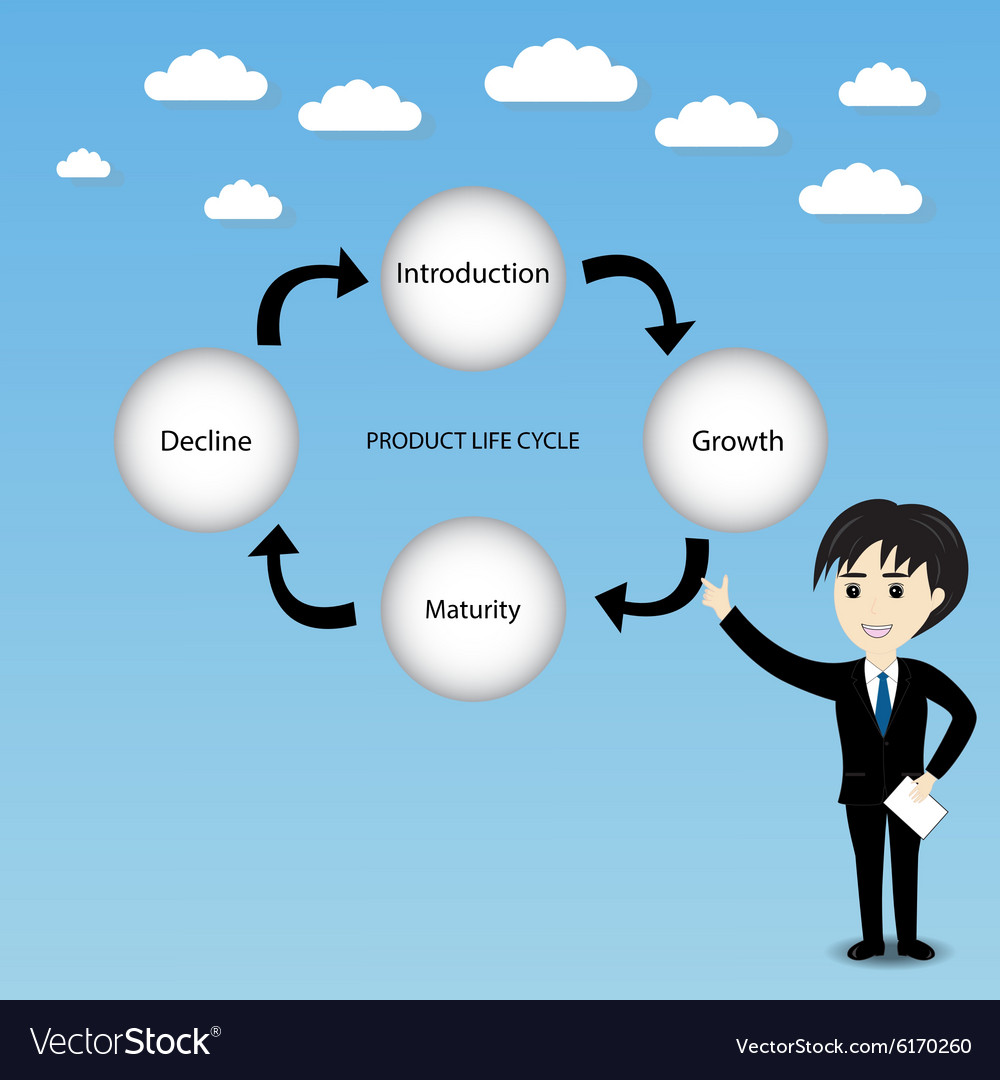 Product life cycle chart vector image