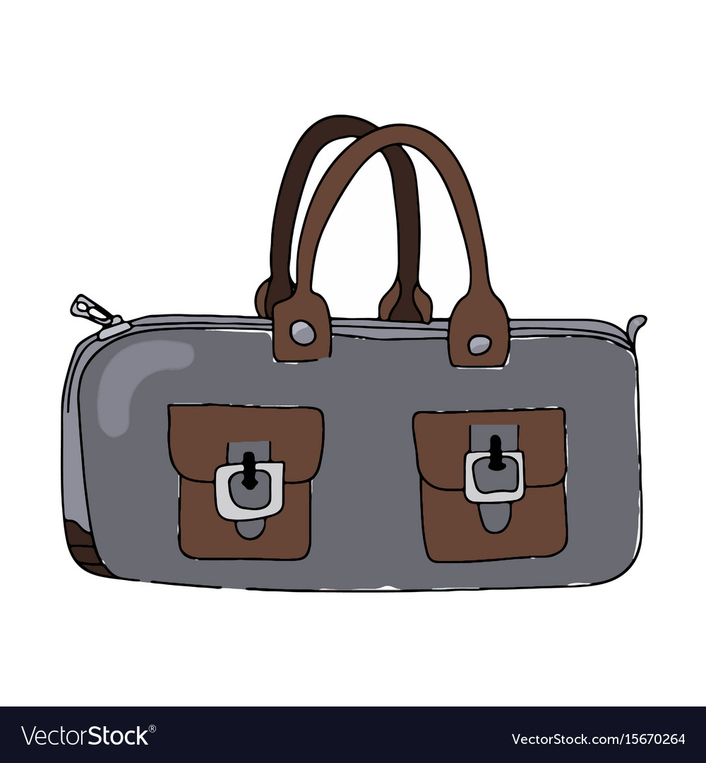Lady s bag vector image