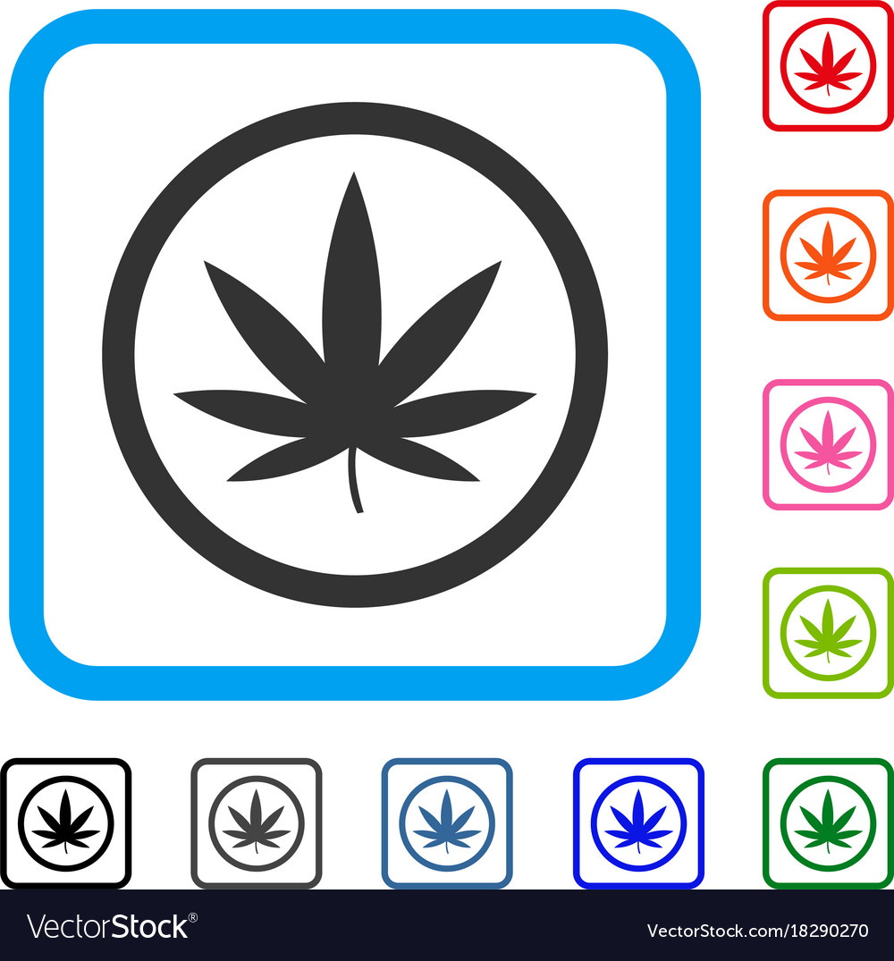 Cannabis framed icon vector image