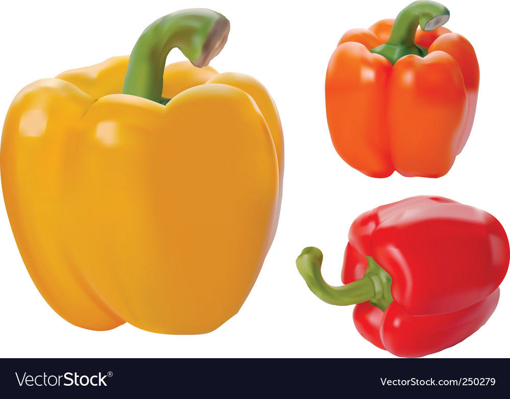 Yellow red and orange paprika vector image