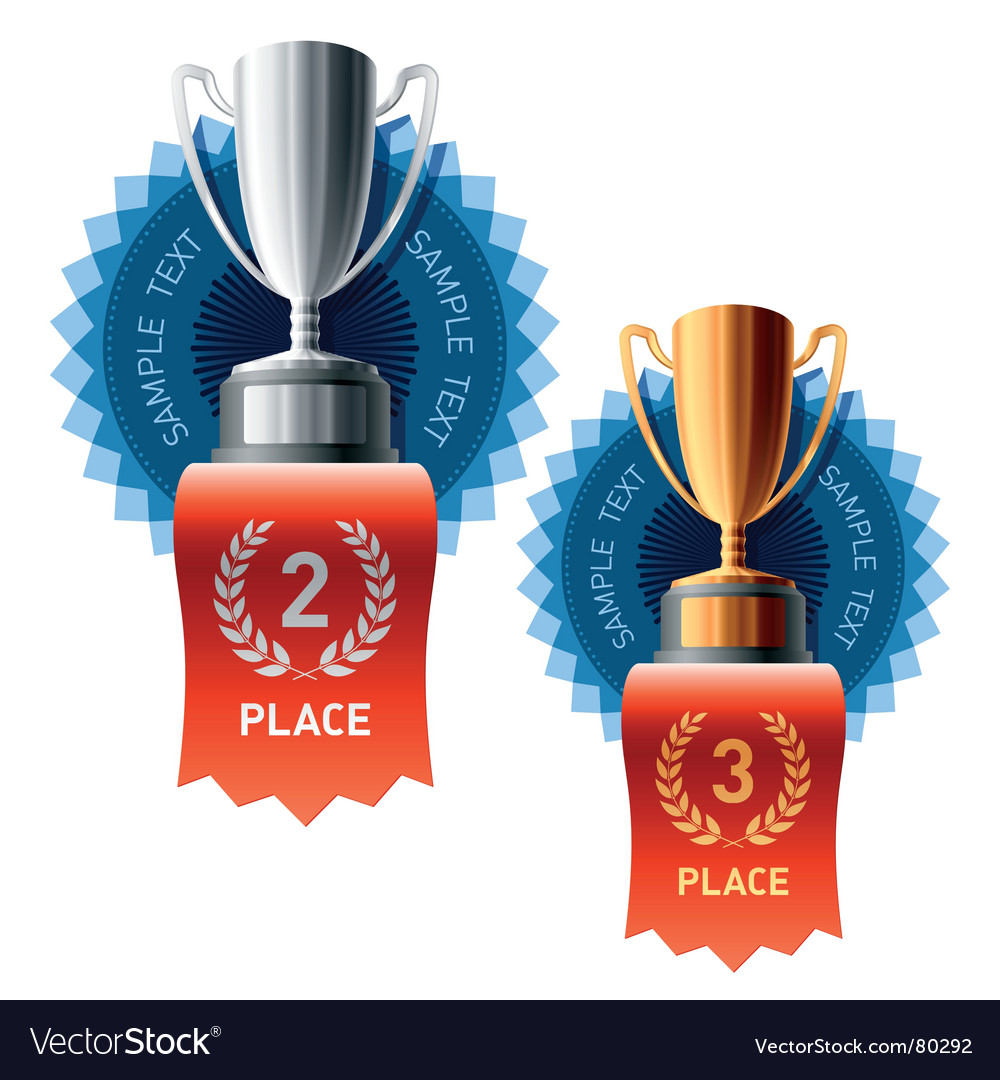 Silver and bronze awards vector image
