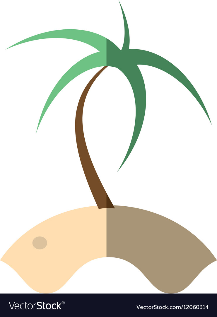 Cartoon palm sand tropical beach shadow vector image
