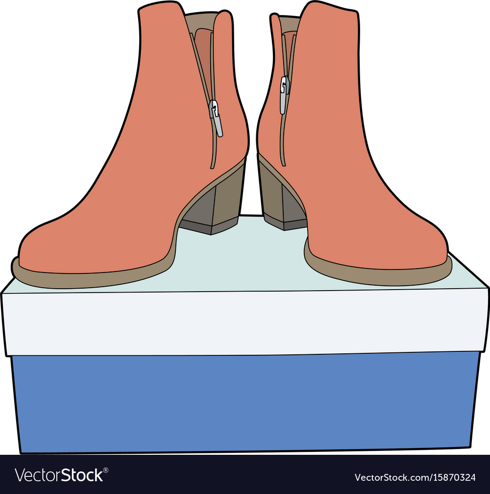 Boots on a blue box vector image