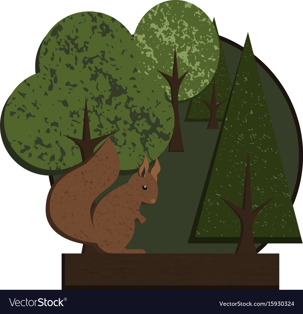 Logo squirrel in forest vector image