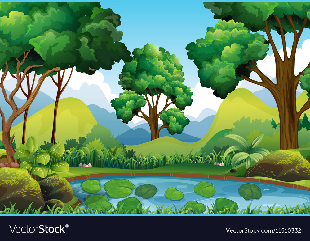 Forest scene with trees and pond vector image
