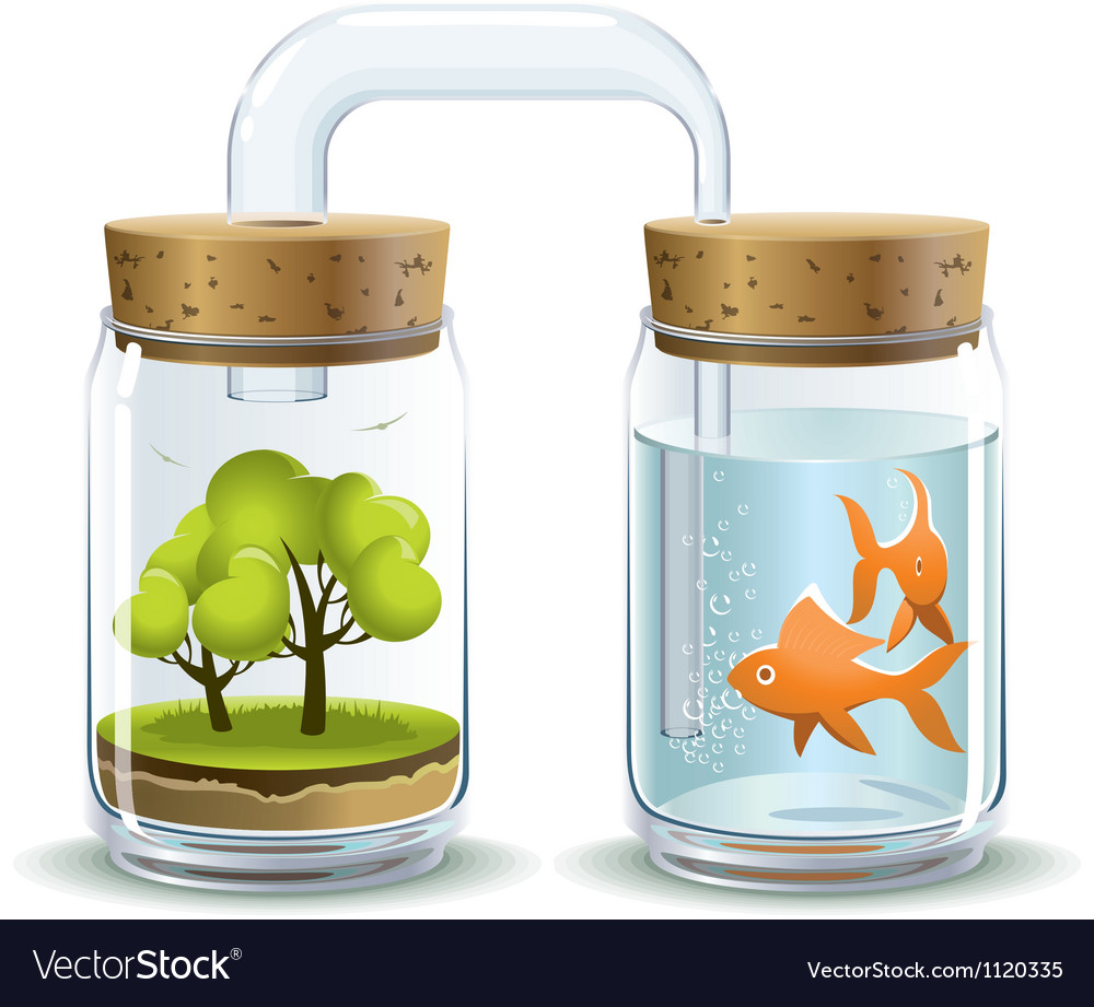 Oxygen for fish vector image