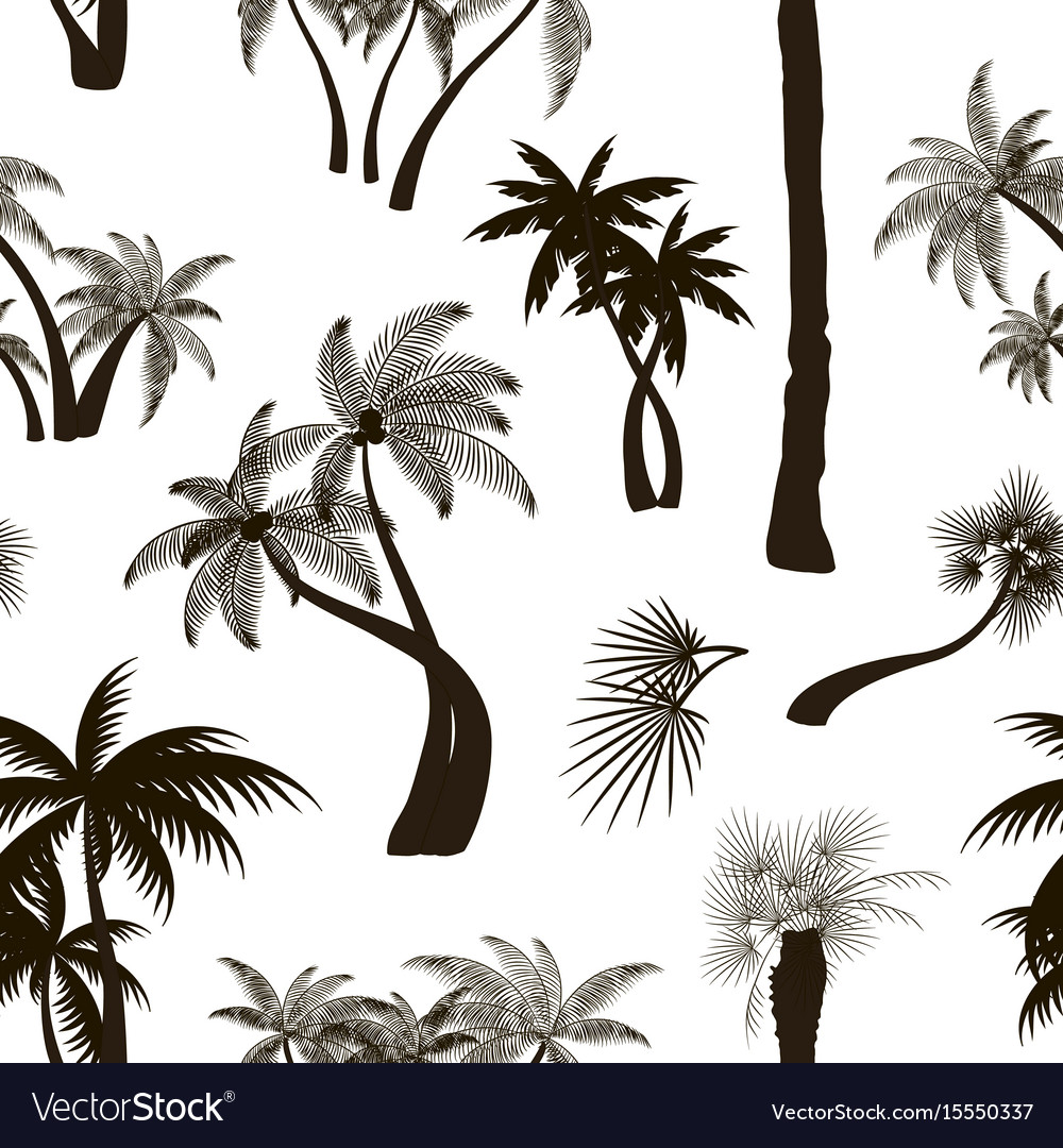 Palm collection pattern vector image