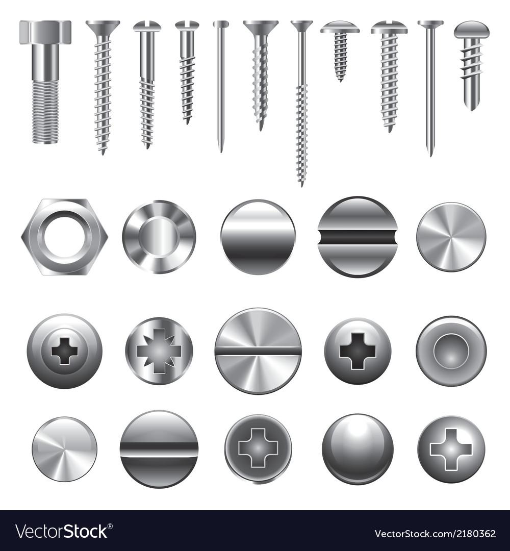 Set screws nails vector image