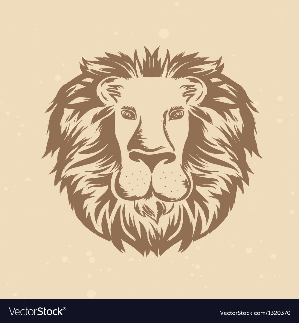 Lion head in engraving style vector image