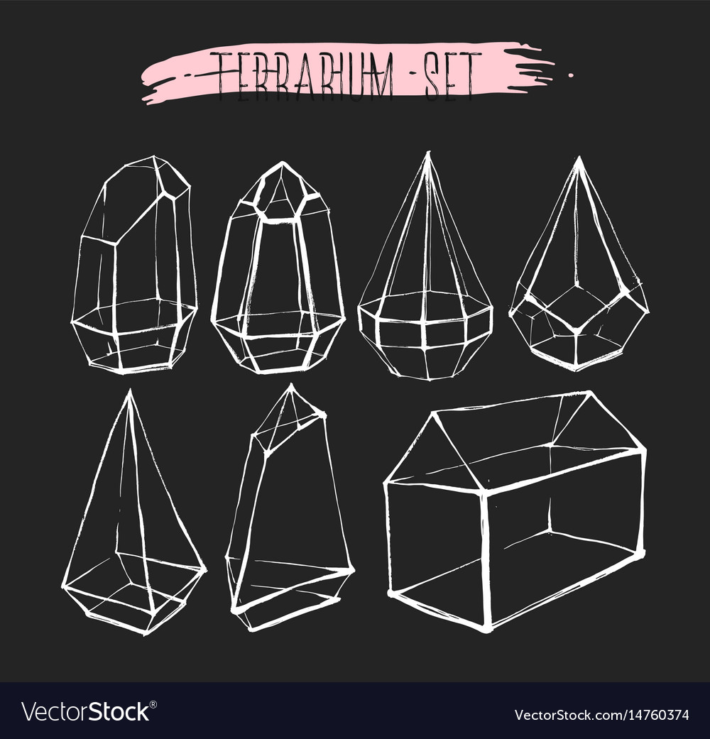 Hand drawn graphic line glass terrarium vector image