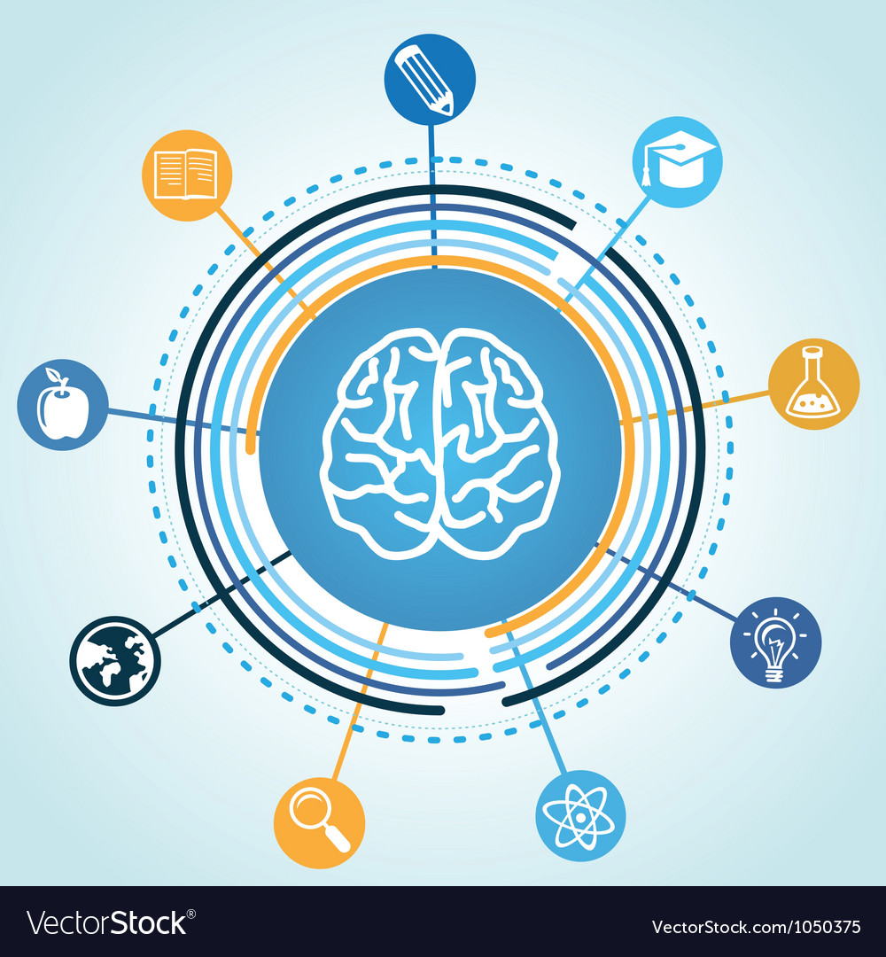 Education concept - brain and science icons vector image