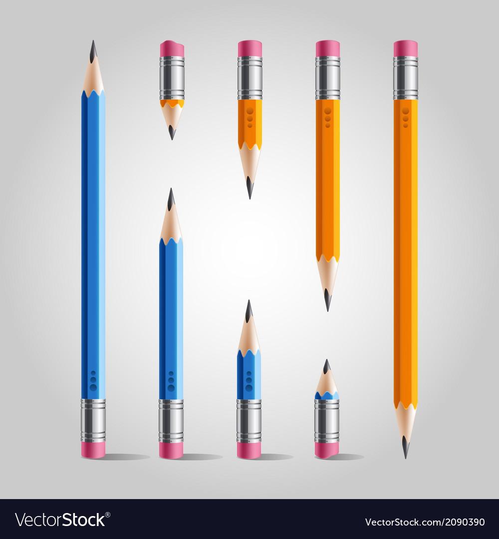 Short and long pencil set vector image
