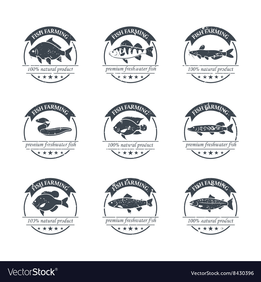 Perfect set of fish farming logos vector image