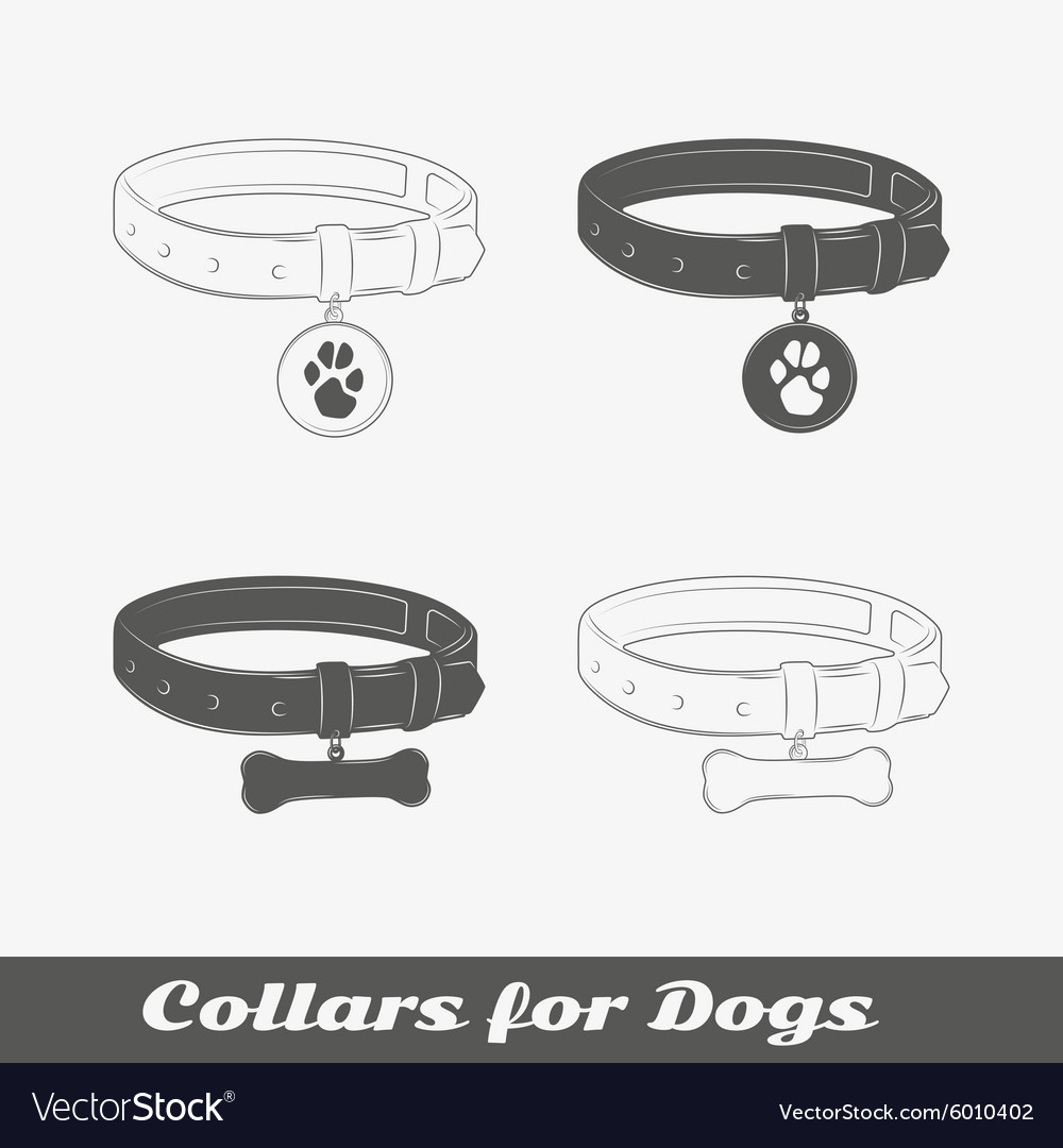 Silhouette collars for dogs vector image
