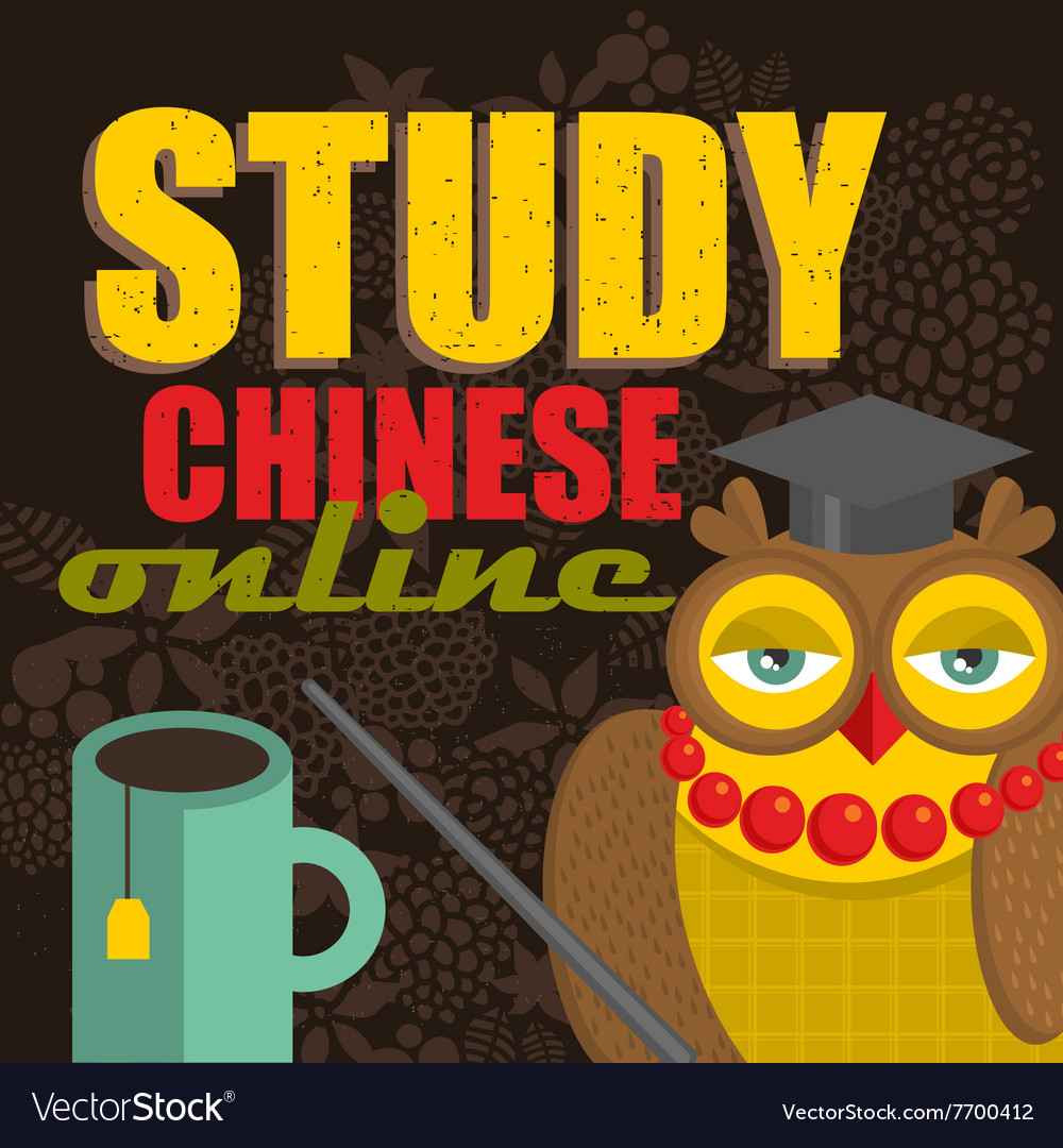 how to study for chinese