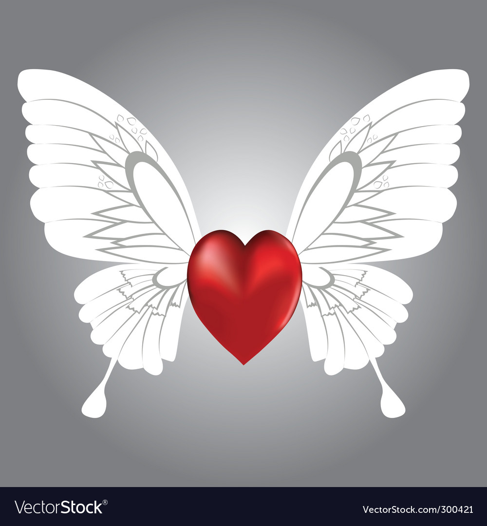 Winged heart vector image