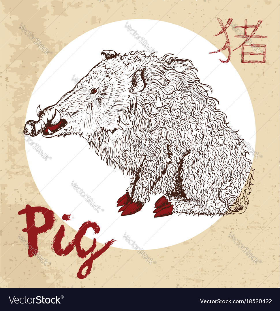 Chinese zodiac symbol of etching pig royalty free vector chinese zodiac symbol of etching pig vector image biocorpaavc Gallery
