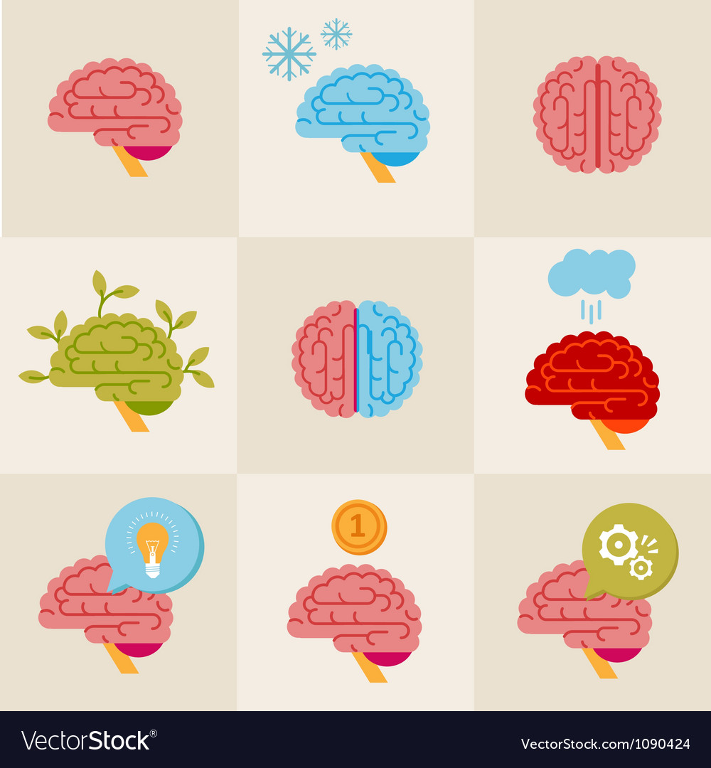 Brain icons vector image