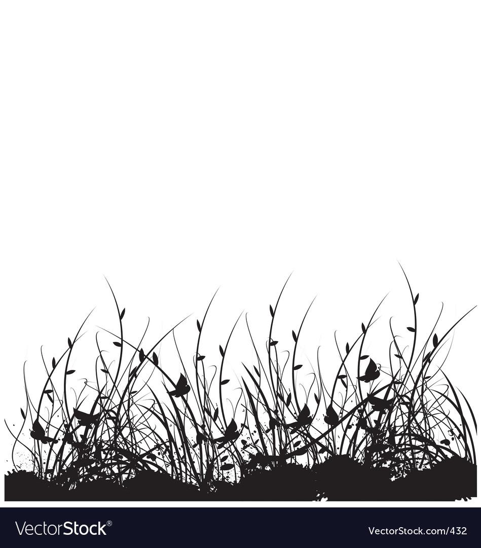Wild flower garden vector image