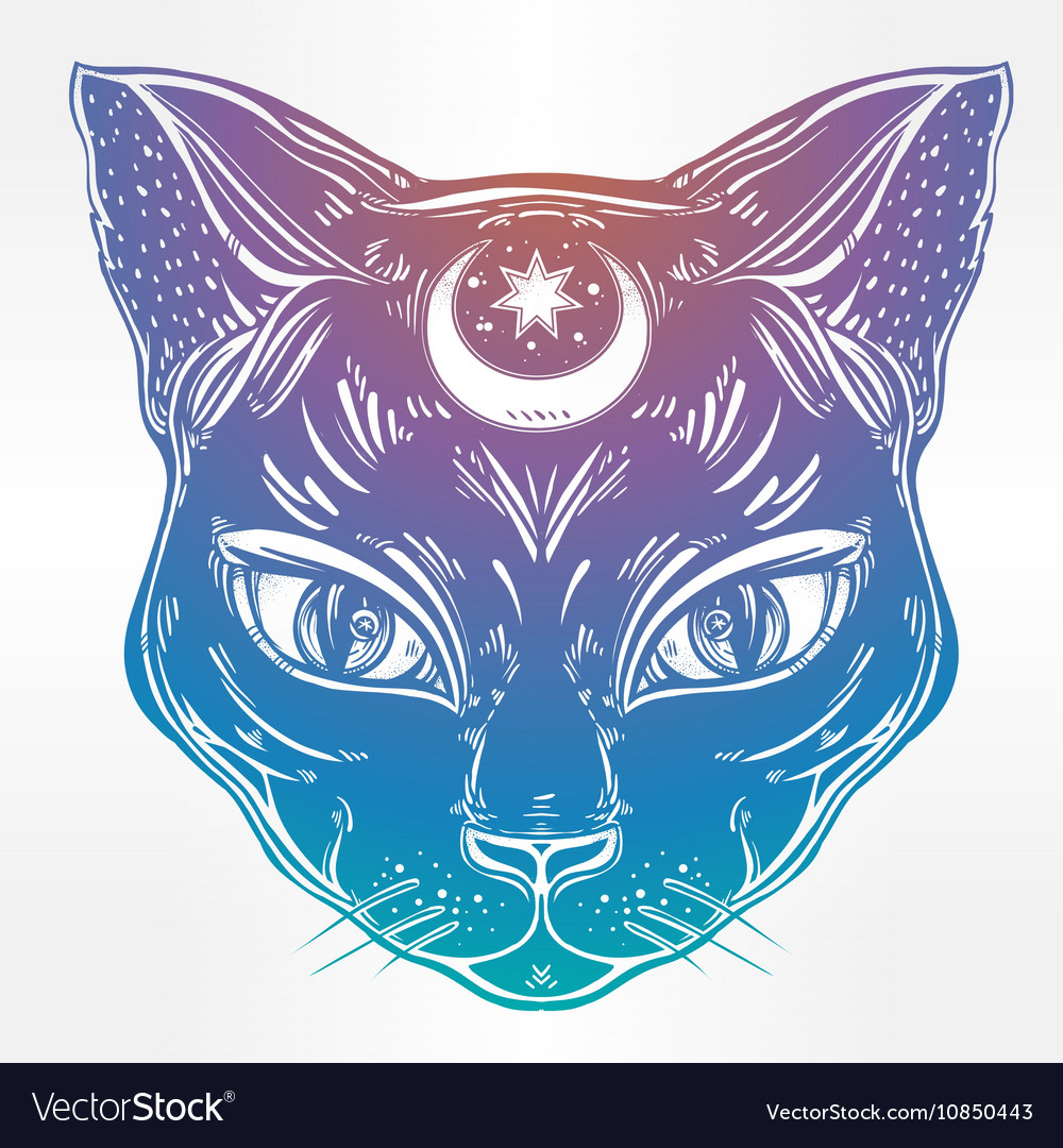 Black cat head portrait with moon vector image