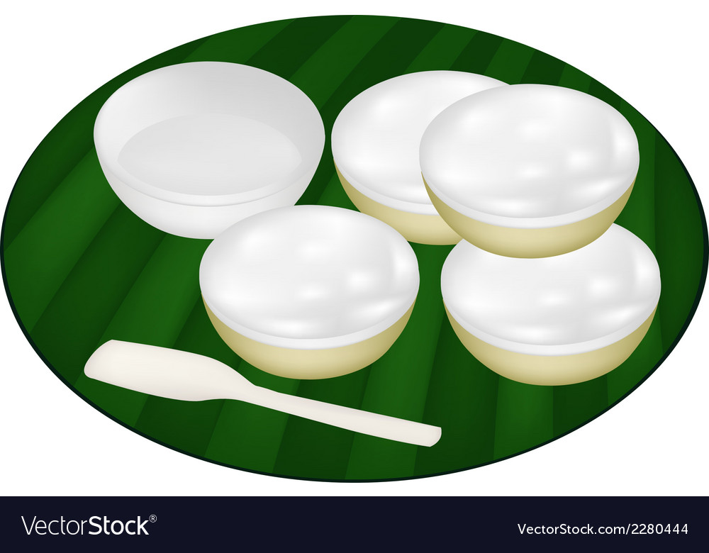Thai Dessert of Coconut Custard on Banana Leaf vector image