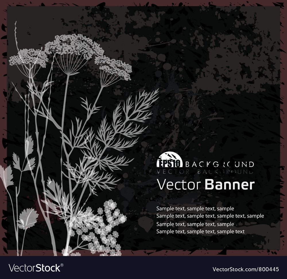 Backgound with plants vector image