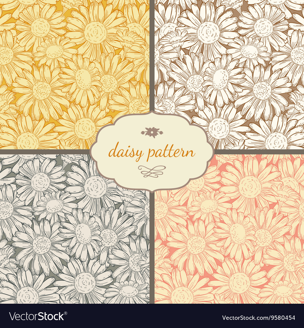 Set of four seamless daisy patterns vector image