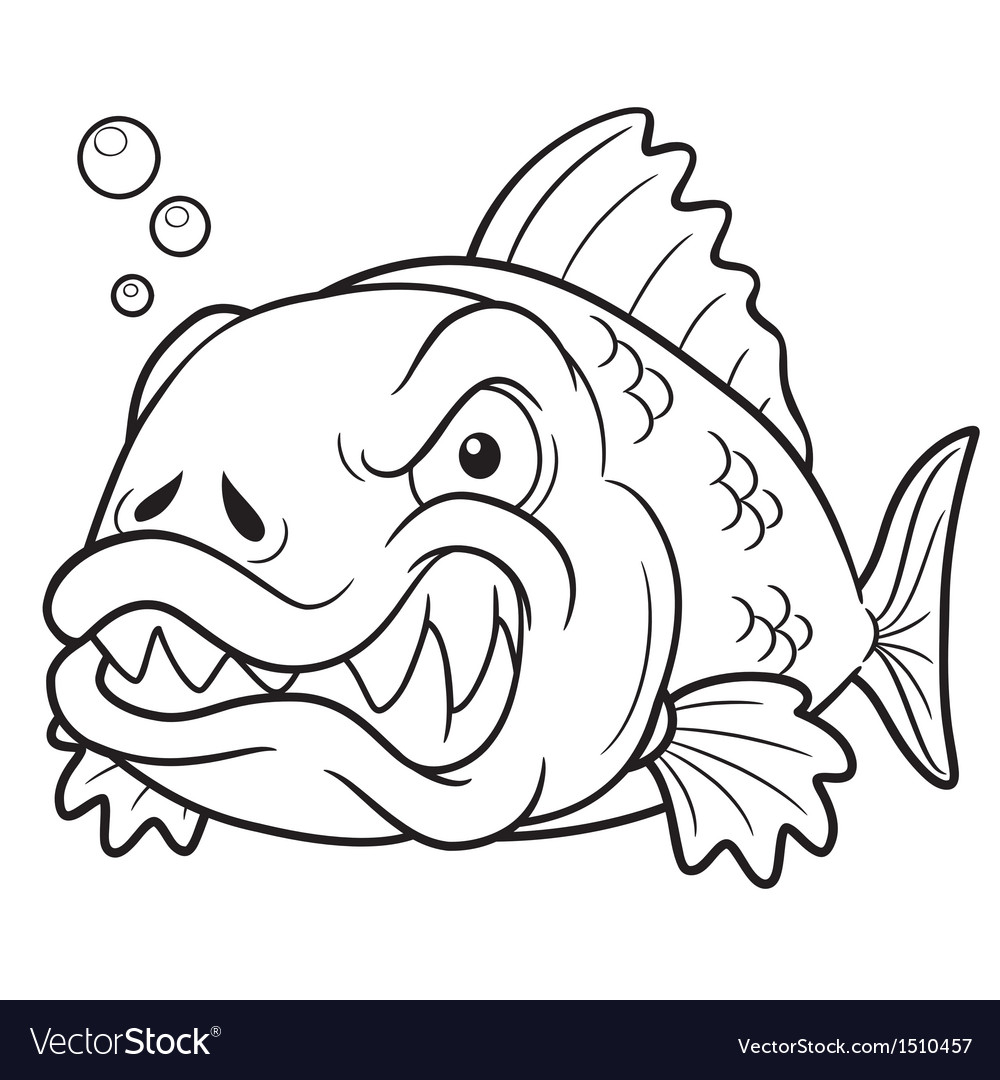fish angry outline royalty free vector image vectorstock