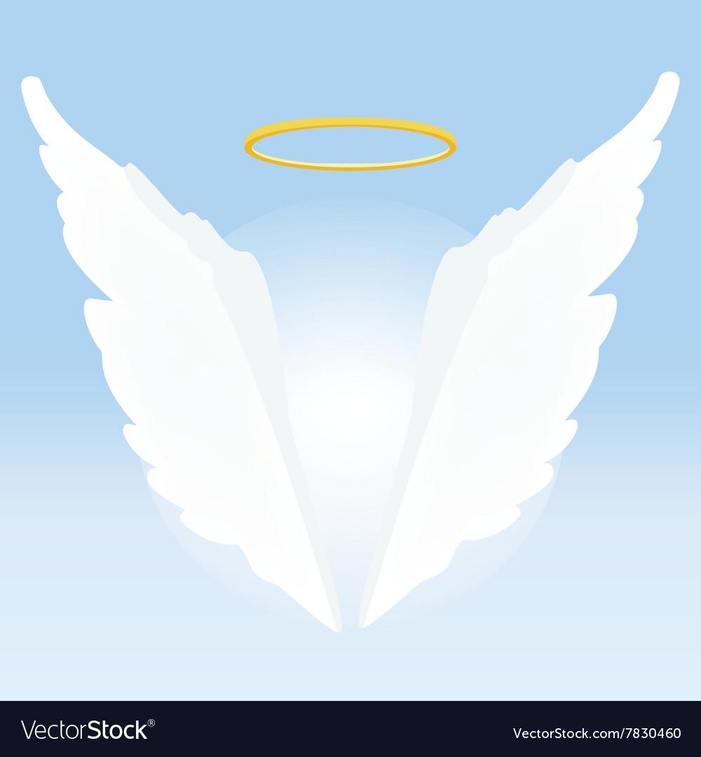 Angel wings and nimbus vector image