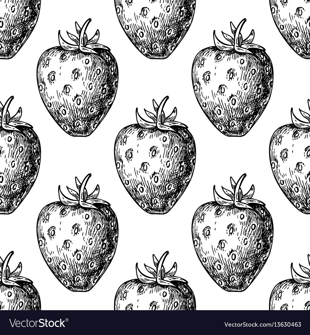 Strawberry seamless pattern drawing vector image