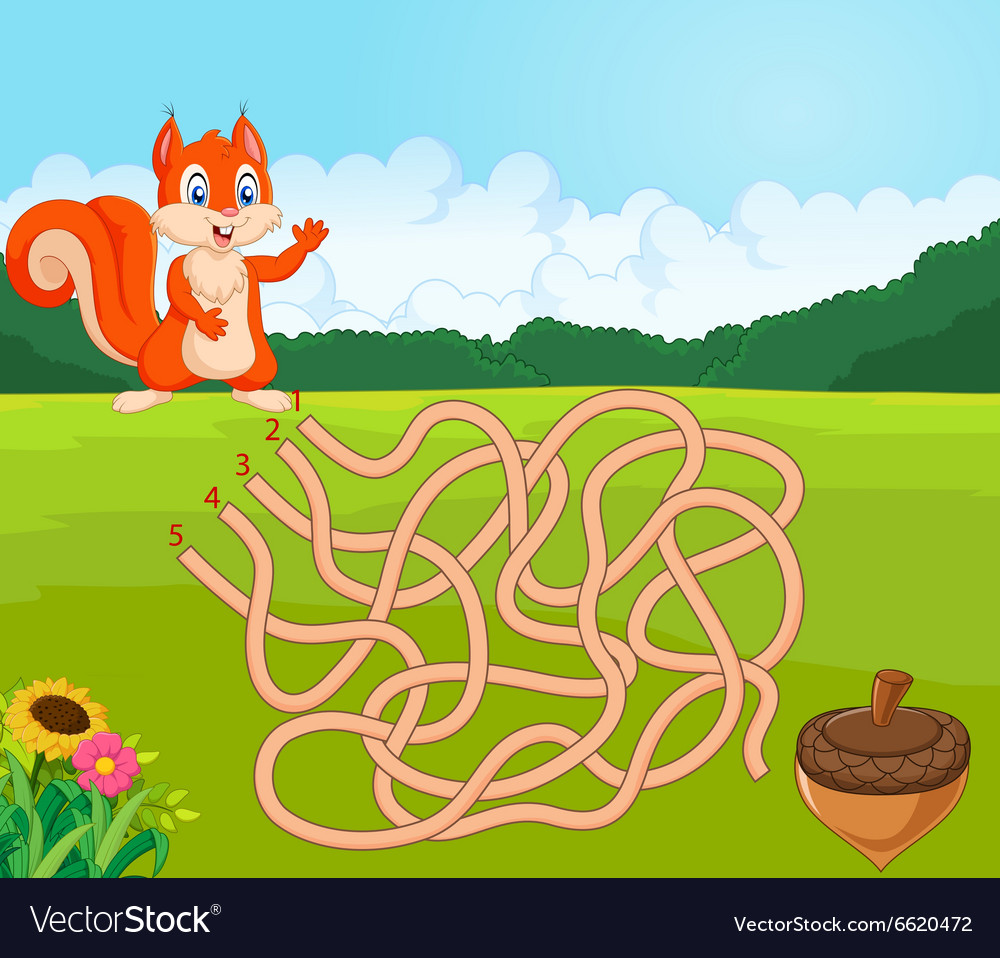 Help squirrel to find way to pinecone in the maze vector image