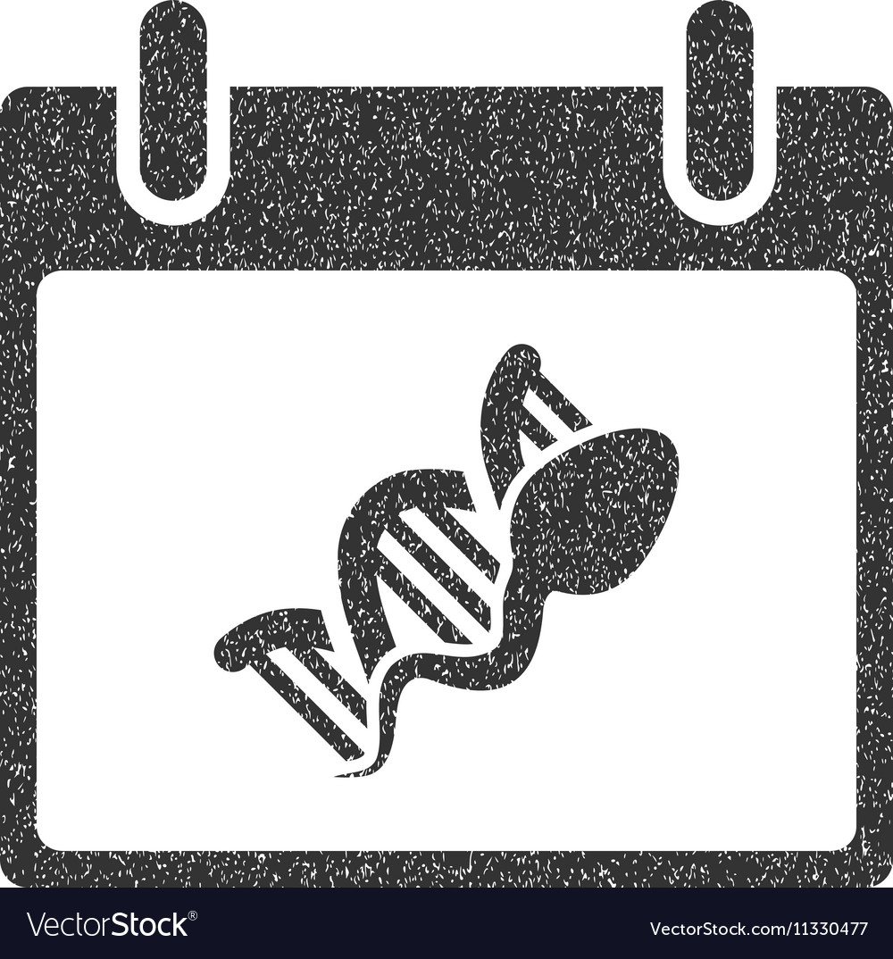 Sperm DNA Replication Calendar Day Grainy Texture vector image