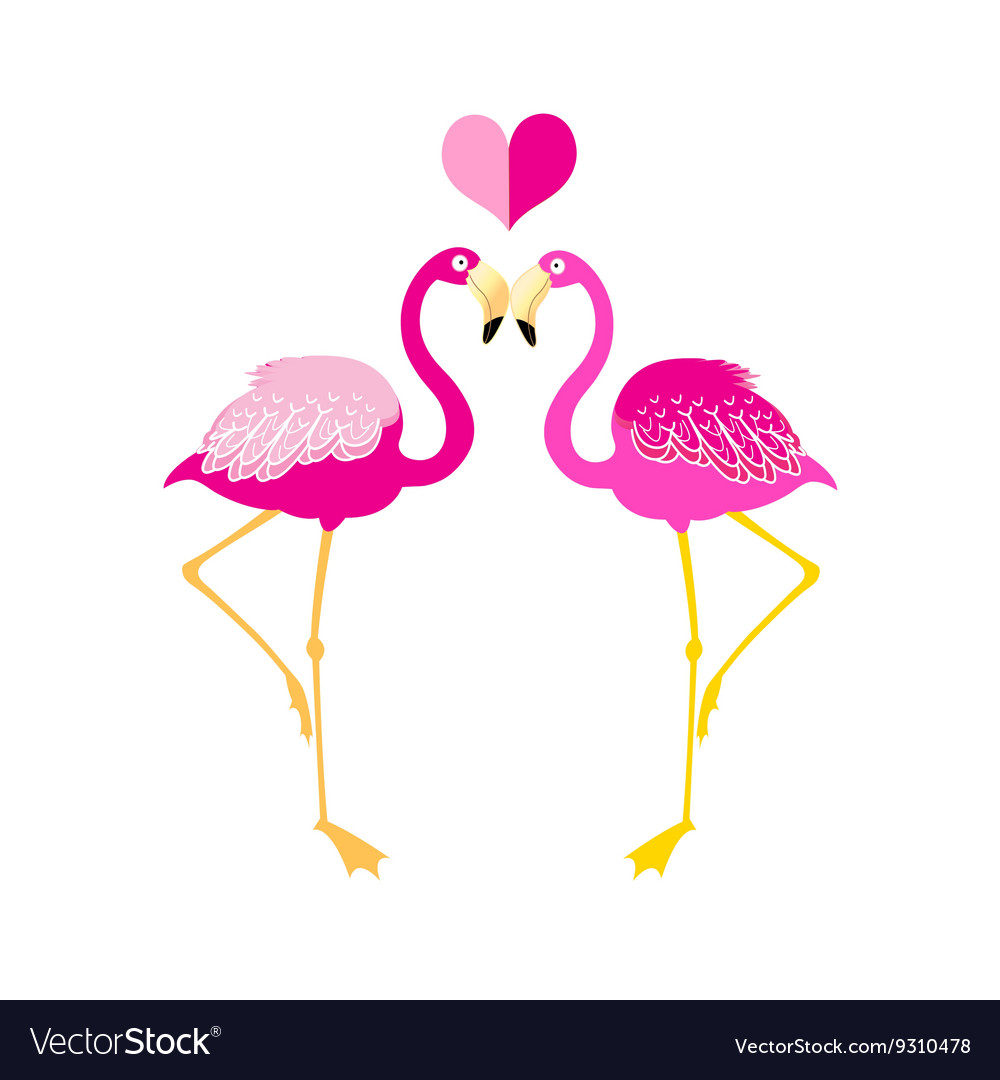 Graphics flamingo lovers vector image