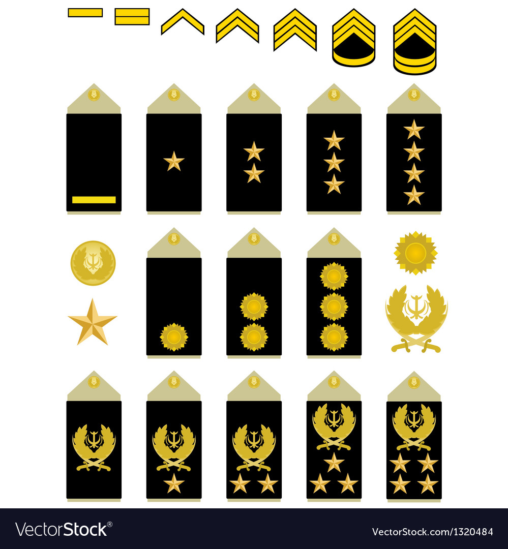 Insignia of the Iranian Army vector image