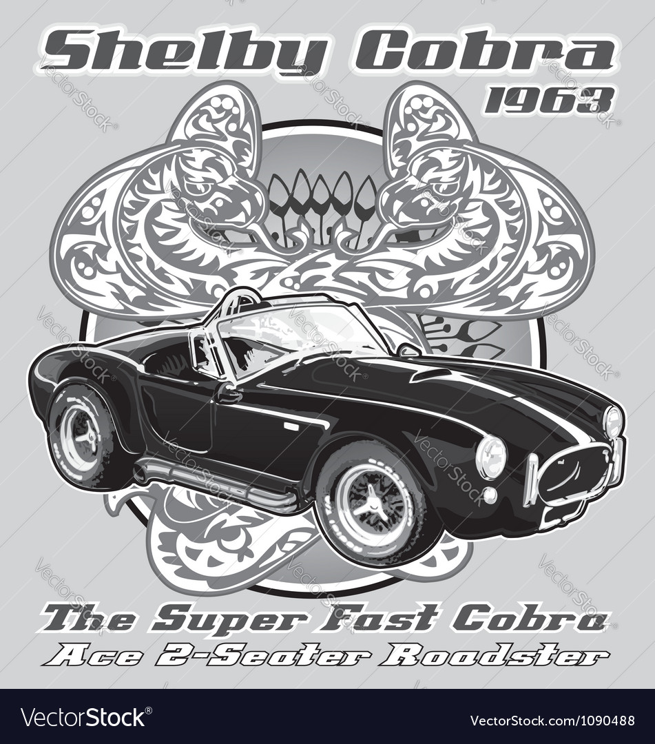 Shelby Cobra 1963 vector image