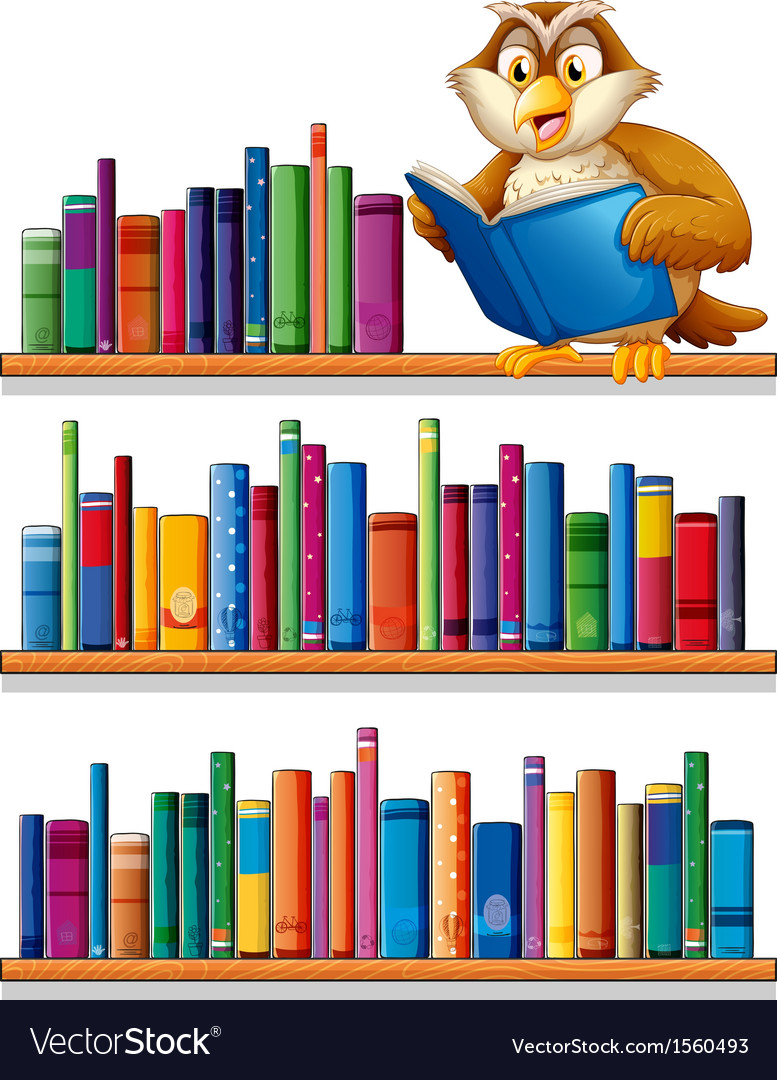 An owl above the wooden bookshelves with books vector image