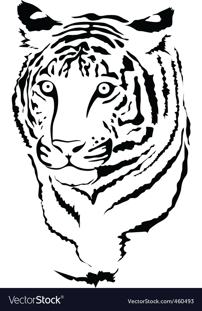 Big cat vector image