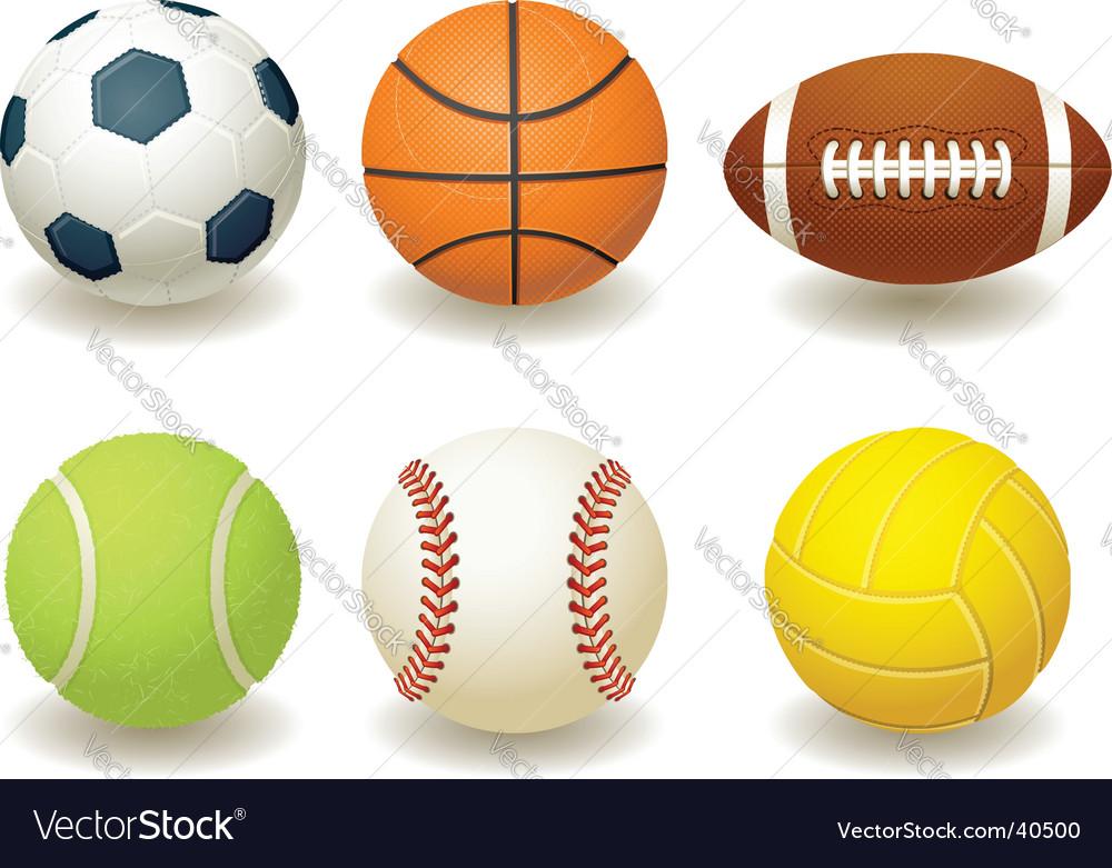 Team sport balls vector image